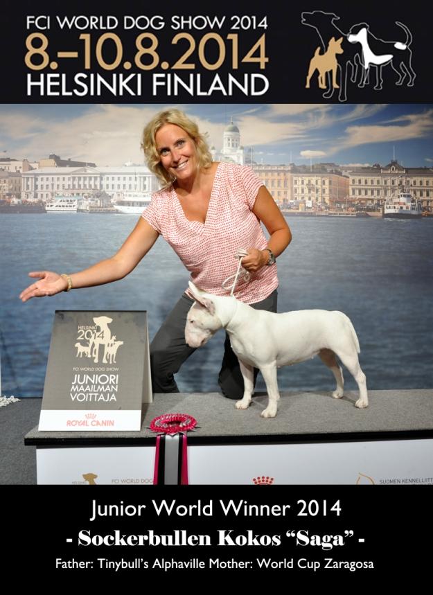 """Junior World Winner Sockerbullen Kokos """"Saga"""""""